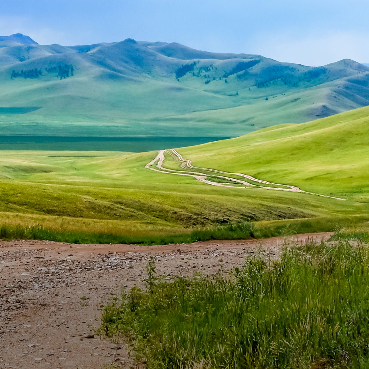 Winding dirt track through lush rolling hills of central Mongolian steppe